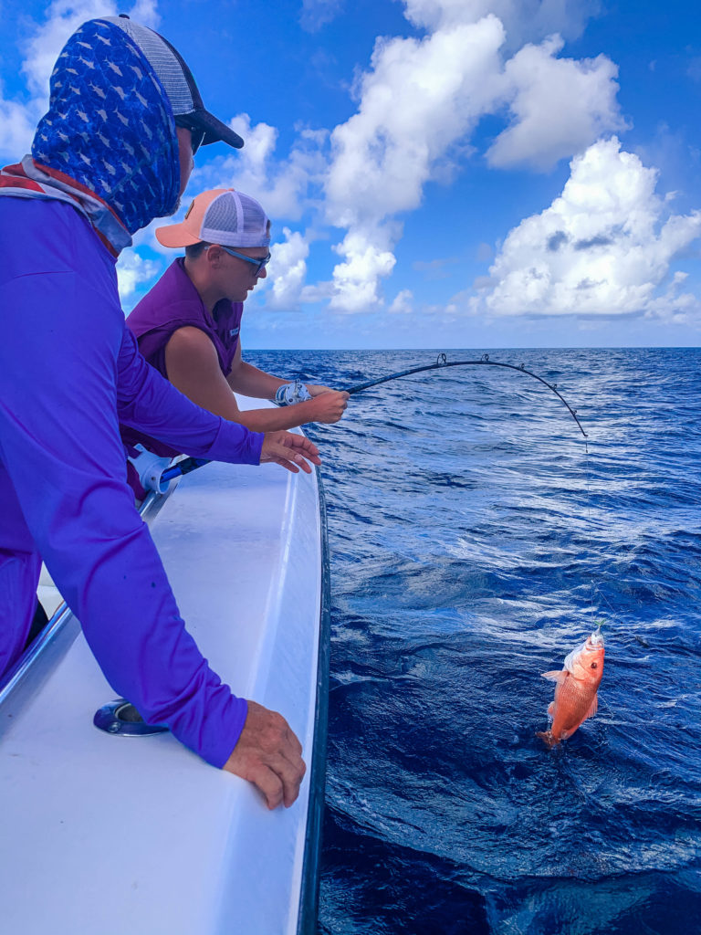 Fishing offshore reeling in a red snapper